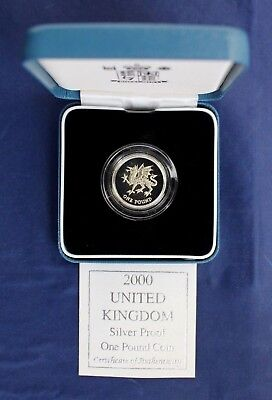 2000 Silver Proof £1 coin in Case with COA    (N8/30)