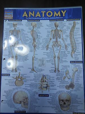 BARCHARTS ANATOMY QUICK Study Guide - $4.75 | PicClick