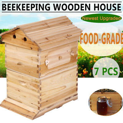 Wooden Beekeeping Beehive House+7PCS Upgraded Auto Flow Bee Comb Hive Frames AF