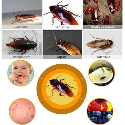50 Pack Green leaf Cockroach Killing Bait Powder Remove Entire Cockroaches Home