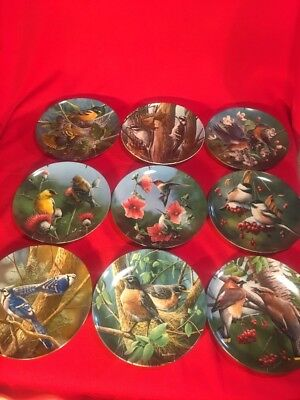 Birds of Your Garden Lot of 9 Plates Knowles Kevin Daniel Britannica Beautiful!