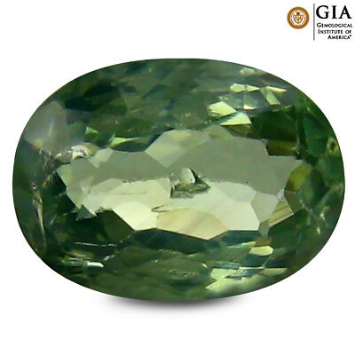 1.24 ct GIA CERTIFIED Oval Cut (8 x 6 mm) Green Chrysoberyl Genuine Gemstone