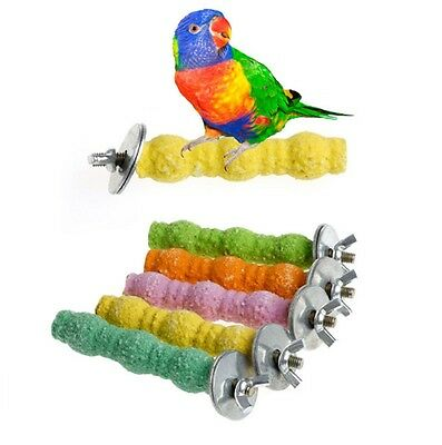 Colourful Chew Branch Bird Perch for Cage Stand Platform Pet Parrot Buggie Toy