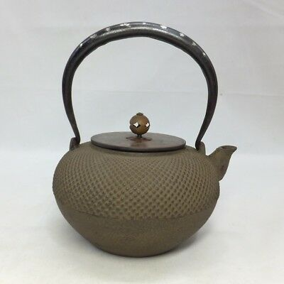 F111: Japanese quality iron kettle TETSUBIN with silver inlay and ARARE pattern