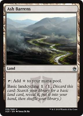 DISTESE DI POLVERE - ASH BARRENS Magic A25 Mint