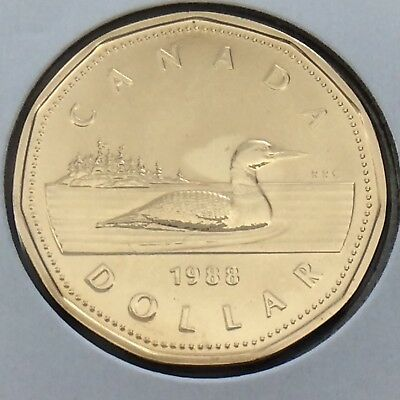 1988 Canada 1 One Dollar Loonie Canadian Brilliant Uncirculated Coin G539