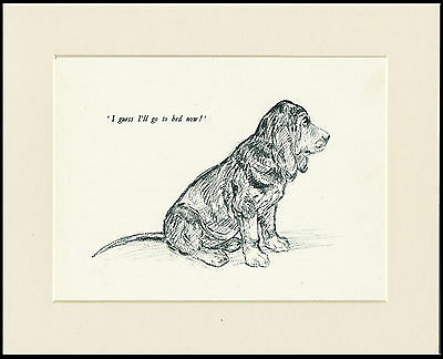 BLOODHOUND PUP CHARMING VINTAGE 1930'S DOG ART PRINT by KF BARKER READY MOUNTED