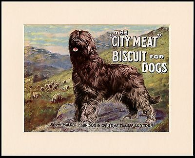 Briard Great Dog Food Advert Print Mounted Ready To Frame