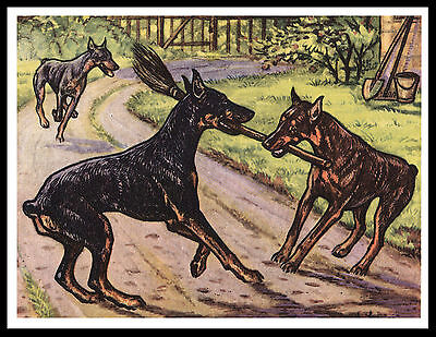 Doberman Pinscher Two Dogs Playing With A Broom Vintage Style Dog Print Poster