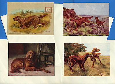 Irish Setter Pack Of 4 Vintage Style Dog Print Greetings Note Cards #2