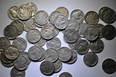 1 Roll of 40 Buffalo Nickels With Dates (Guaranteed That They All Have Dates)