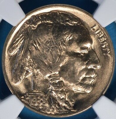 1938-D Buffalo Nickel NGC MS66- Exceptional Luster, Eye Appeal