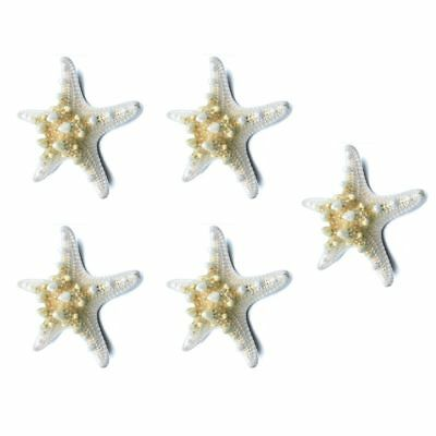4X(5pcs/lots crafts white bread sea shell starfish, fashion home decorativ E4R9)