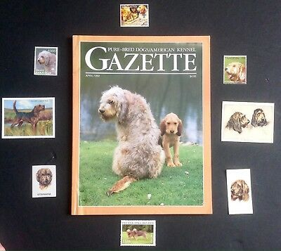 Otterhound, Collectable - DIY Collage - National Geographic Centerprint