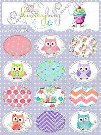 Honeybug Sprinkles Sweetheart Pacifier/Dummy Happy Owls Stickers Reborn Baby