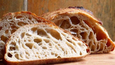 "SOURDOUGH yeast bread STARTER ""San Francisco""  BEAST+ RECIPES 10starters in 1 @d"