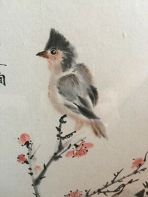 Japanese Watercolor Painting Bird Branch Cherry Blossom Signed Rice Paper