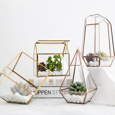 Geometric Glass Terrarium for Home/Wedding Decor Plant/Succulent/Flower Box Gift