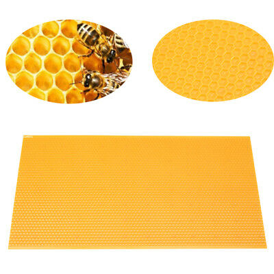 Plastic Honeycomb Foundation Bee Hive Nest Frames Sheet Beekeeping Non-toxic
