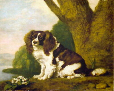 Vintage Art Oil Painting Print Canvas Stubbs Spaniel Dog on Canvas Ready to Hang
