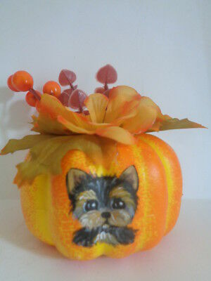 HAND PAINTED ART~~~YORKIE TERRIER MINI FALL PUMPKIN WITH FALL FLOWERS~Pretty!