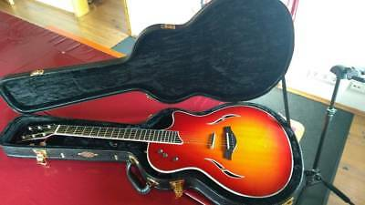 Taylor T5 S + Luxus Taylor Koffer