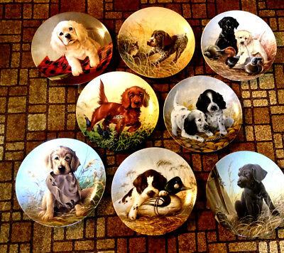 "Lynn Kaatz ""Field Puppies"" (8) Collector Plates Complete set New Condition (USA)"