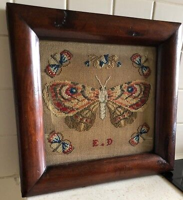 Early 19C Woolwork Embroidery-'Butterflies' In Mahogany Cushion Moulded Frame