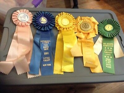 5 Vintage Horse Show Prize Ribbond New York State Fair Plus More