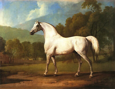 Vintage Art Oil  Painting Print On Canvas Stubbs Mambrino Horse Stunning Rich