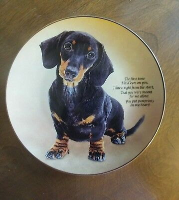 Pawprints On My Heart, Cherished Dachshunds  Collectors Plate