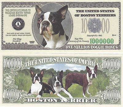 10 Boston Terrier Dog Novelty Currency Bills # 334
