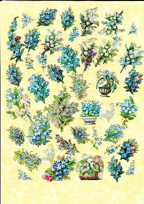 Victorian Scraps ,  Mixed Forget- Me- Not  Flowers , Largest, Approx 7 X 2 Cm
