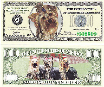 Two Yorkshire Terrier Dog Yorkie Canine Novelty Money Bills