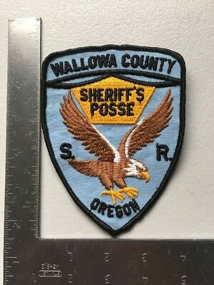Wallowa County Oregon Sheriffs Department Posse Police Patch OR Cheesecloth