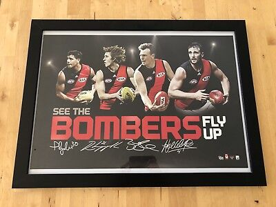 Essendon Bombers Poster Print Ryder Heppell Goddard Watson In Frame