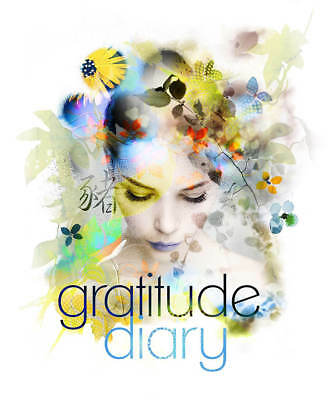 Gratitude Diary and Daily Planner - 2019 Edition NEW Release book Melanie Spears