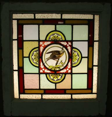 "VICTORIAN ENGLISH LEADED STAINED GLASS WINDOW Hand Painted Bird 19.75"" x 21.25"""