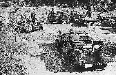 WW2 Picture Photo 1944 Five Jeep Willys MB vehicles in Italy 2268