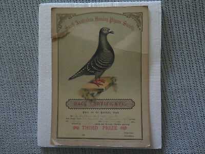 SOUTH AUSTRALIAN HOMING PIGEON SOCIETY 1901 THIRD PRIZE BROKEN HILL to ADELAIDE