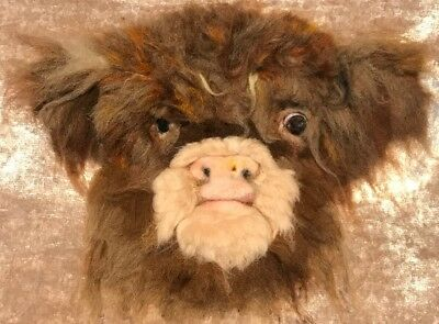 Highland Cow Baby Portrait - One Of A Kind 2D