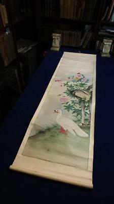 ANTIQUE CHINESE SCROLL PAINTING, LARGE BIRD & FLOWERS, NO RESERVE, 105 x 30cm