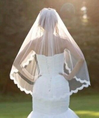Shallow Ivory Short Wedding Veil Bridal Veil elbow Length Lace Edge with comb