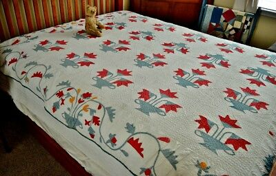 Antique 19th c Hand Stitched Carolina Lilly Quilt with Spectacular Border