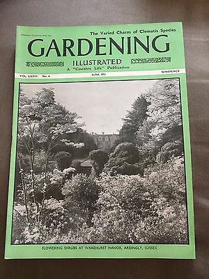 """June 1951 Gardening Illustrated """"the Varied Charm Of Clematis Species"""" Magazine"""