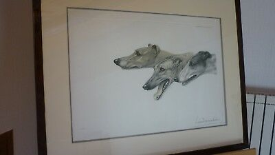 GRAVURE LEON DANCHIN 3 LEVRIERS COURSE signé  N° OLD ETCHING  GREYHOUND SIGNED