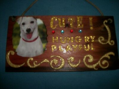 DOG Lover hand Made colorful Plaque!!