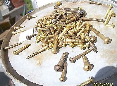 """135 Vintage Solid Brass Wood Screws With Round, Reg. Slot Head's, 3/8""""-2"""", Lot#3"""