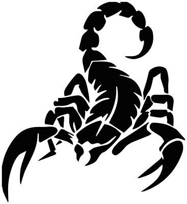 Vinyl Decal Scorpion Car Window Tailgate Wrap Full Color Graphics Combat Sticker