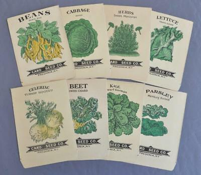 Vintage Card Seed Co. Fredonia NY Lot of 8 Unused/Empty Illustr. Seed Packages